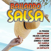 Bailando Salsa by Various Artists