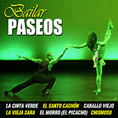 Bailando Paseos by Various Artists