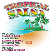 Tropical Salsa by Various Artists