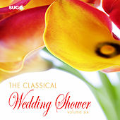 The Classical Wedding Shower, Vol. 6 by Various Artists