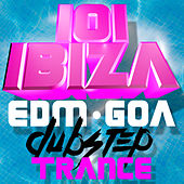 101 Ibiza EDM Goa Dubstep Trance by Various Artists
