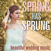 Spring Has Sprung! - Beautiful Wedding Music by Pianissimo Brothers