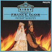 Borodin: Prince Igor by Various Artists