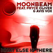 What Else Is There by Moonbeam
