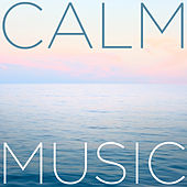 Calm Music by Pianissimo Brothers