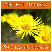 Perfect Summer: 50 Classic Songs by Pianissimo Brothers