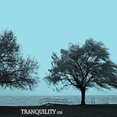 Tranquility 008 by Various Artists
