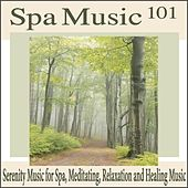 Spa Music 101: Serenity Music for Spa, Meditating, Relaxation and Healing Music by Robbins Island Music Group
