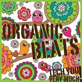 Organic Beats (Electronic Music Sampler) by Various Artists