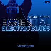 Essential Electric Blues Vol 1 von Various Artists