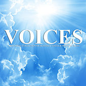 Voices by Various Artists