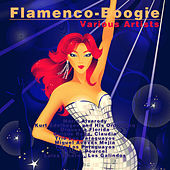 Flamenco-Boogie by Various Artists