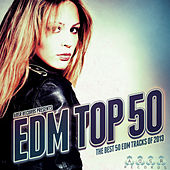 EDM Top 50 - The Best 50 EDM Tracks of 2013 by Various Artists