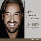 Mes plaisirs… la suite by Marc Hervieux