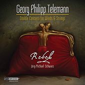 Telemann: Double Concerti for Winds and Strings by Jörg-Michael Schwarz