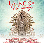 La Rosa De Guadalupe by Various Artists