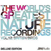 The World's Greatest Nature Recordings, Vol. 12: British Birds (Deluxe Edition) by Global Journey