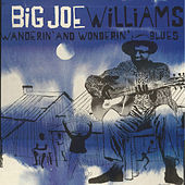 Wanderin' and Wonderin' Blues by Big Joe Williams