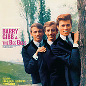 The Bee Gee's Sing And Play 14 Barry Gibb Songs by Bee Gees