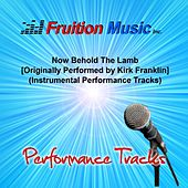Now Behold the Lamb (Originally Performed by Kirk Franklin) [Instrumental Track] by Fruition Music Inc.