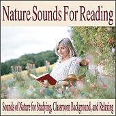 Nature Sounds for Reading: Sounds of Nature for Studying, Classroom Background, And Relaxing by Robbins Island Music Group