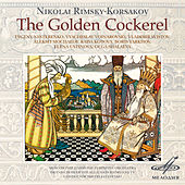 Rimsky-Korsakov: Golden Cockerel by Olga Shalaeva
