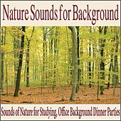 Nature Sounds for Background (Sounds of Nature for Studying, Office Background Dinner Parties) by Robbins Island Music Group