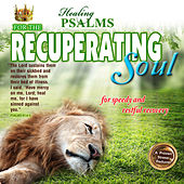 Psalms for the Recuperating Soul by David & The High Spirit
