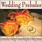Wedding Preludes: Instrumental Music for Weddings Pre-Ceremony Wedding Music for Wedding Ceremonies by Robbins Island Music Group