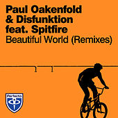 Beautiful World (Remixes) by Paul Oakenfold