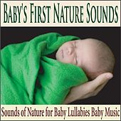 Baby's First Nature Sounds: Sounds of Nature for Baby Lullabies Baby Music by Robbins Island Music Group