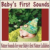 Baby's First Sounds: Nature Sounds for Your Baby's First Nature Lullabies by Robbins Island Music Group