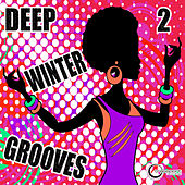 Deep Winter Grooves, Vol. 2 by Various Artists
