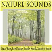 Nature Sounds: Ocean Waves, Forest Sounds, Thunder Sounds, Sounds of Nature by Robbins Island Music Group