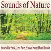 Sounds of Nature: Sounds of the Forest, Ocean Waves, Echoes of Nature, Distant Thunder by Robbins Island Music Group
