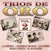 Trios de Oro, Vol. 2 by Various Artists