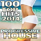 Progressive House 100 Top Hits 2013 - Best of Top Electronic Dance Club, Progressive Techno, Acid Tech House, Psychedelic Trance by Various Artists