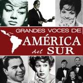 Grandes Voces de América del Sur by Various Artists