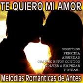 Te Quiero Mi Amor. Melodías Románticas de Antes by Various Artists