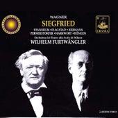 Wagner: Siegfried by Wilhelm Furtwängler