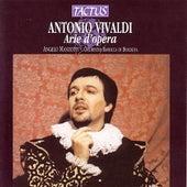 Antonio Vivaldi - Arie d'Opera by Antonio Vivaldi