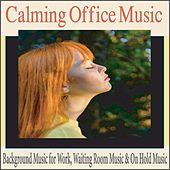 Calming Office Music: Background Music for Work, Waiting Room Music & On Hold Music by Robbins Island Music Group