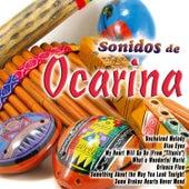Sonidos de Ocarina by Various Artists