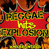 Reggae Hits Explosion by Various Artists