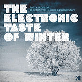 The Electronic Taste of Winter (Tasty Slices of Electro-Tech-House & Progressive) by Various Artists
