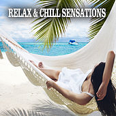 Relax & Chill Sensations by Various Artists