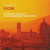 Puccini:  The Best Of Puccini by Various Artists