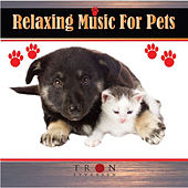 Critter Comforts-Relaxing Music for Pets by Various Artists