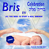 Bris Celebration by David & The High Spirit