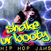 Shake Ur Booty: Hip Hop Jams by Various Artists
